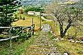 Caussols. Chemin nommé voie Romaine.jpg