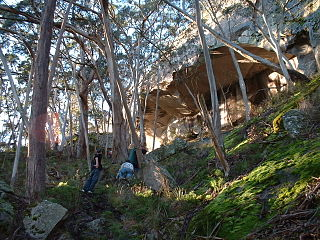Mount Cole State Forest protected area in Victoria, Australia