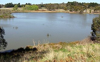 Cecil Hoskins Nature Reserve - A swamp and wetlands are located within the reserve