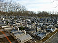 Cementerio de la Almudena (Madrid) 01.jpg
