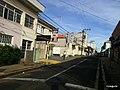 Centro, Franca - São Paulo, Brasil - panoramio (211).jpg