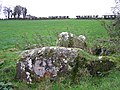 Chambered grave at Deerpark, Ballygowan - geograph.org.uk - 78830.jpg