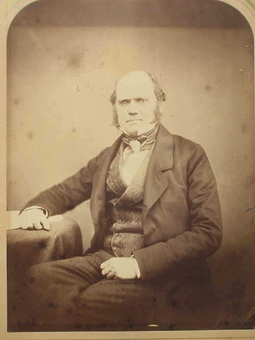500px charles darwin by maull and polyblank, 1855a