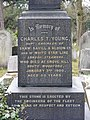 Charles Thomson Young, Chingford Mount.jpg