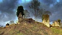Chateau de Montfort sur Risle vu de la basse cour.jpg
