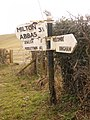 Cheselbourne, damaged signpost at the Milton Abbas turn - geograph.org.uk - 1752274.jpg