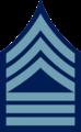 Chevron - Regimental Supply Sergeant Infantry 1902-1909.png