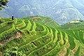 China (14170959883).jpg