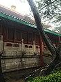 China IMG 0455 (29248413756).jpg