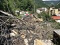 Chute de rochers à Saint-Rambert-en-Bugey en mars 2020 (photo de juin 2020) - 6.jpg
