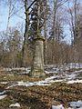 Cmentarz wojskowy z I wojny światowej na wzgórzu Pustki (Łużna) 3.JPG