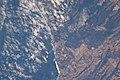 Coastline north of Pichilemu, Chile - Forest.jpg