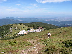 Col du Grand Ballon - The col viewed from the slopes of the Grand Ballon