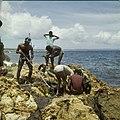 Collectie Nationaal Museum van Wereldculturen TM-20029839 Snorkelen bij de kust van Hato Curacao Boy Lawson (Fotograaf).jpg