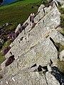 Columns of volcanic rock on Garn Fawr - geograph.org.uk - 537923.jpg