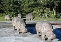 Concrete Hippos.jpg