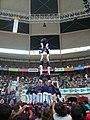 Concurs de Castells 2010 P1310305.JPG