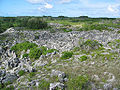 Coral pinacles on Nauru.jpg