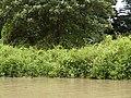 Costa Rica (6092191094).jpg