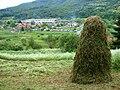 Countryside around Potocari.jpg
