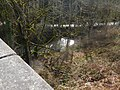 Crossing Padden Creek, Chuckanut Drive Bridge in Fairhaven District (32684084004).jpg