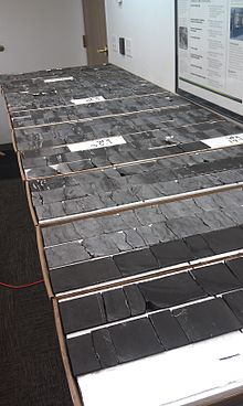 Cut Bakken Core samples.jpg