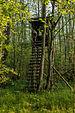 Dülmen, Naturschutzgebiet -Franzosenbach- -- 2014 -- 0180.jpg