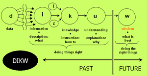 Dikw And Critical Thinking - image 4