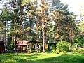 Dacha in forest.jpg