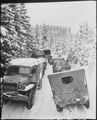 Deep snow banks on a narrow road halt military traffic in the woods of Wallerode, Belgium. 87th Infantry Division - NARA - 531245.tif