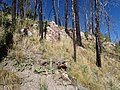 Deer Canyon Rhyolite.jpg
