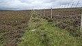 Deer Fence (An Sgòr Dubh) on Mar Lodge Estate (29JUL17) (8).jpg