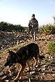 Defense.gov photo essay 100405-A-0350A-186.jpg