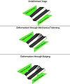 Deformation mechanisms (Passchier and Trouw).jpeg