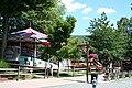 DelGrosso's Amusement Park - panoramio (5).jpg
