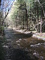 Delaware Water Gap National Recreation Area - Pennsylvania (5677783307).jpg