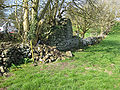 Derry Church Ruins.JPG