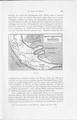 Die Klimate der geologischen Vorzeit 195.pdf