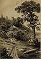 Die Pflanzendecke der Erde - populäre Darstellung der Pflanzengeographie für gebildete Naturfreunde (1859) (20751045968).jpg
