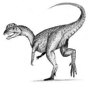 Dessin de dilophosaure