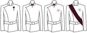 Order of St. Sylvester - Image: Divisa.Ord.San Silvestro