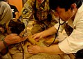 Doctor from the 207th Afghan National Army Corps listens for the heart beat of a military working dog.jpg