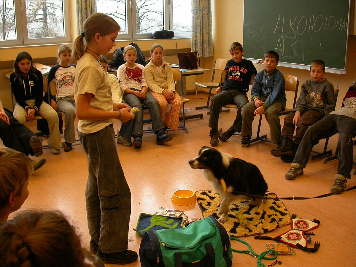 german classroom