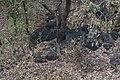 Domboshaba rocks 12.jpg