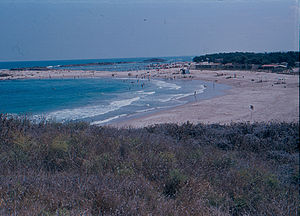 Dor, Israel - Image: Dor beach