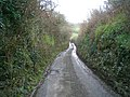 Down the steep lane to the quarry - geograph.org.uk - 303438.jpg