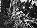 Dr J P E Morrison hunting a gooney bird, Bikini Atoll, summer 1947 (DONALDSON 180).jpeg