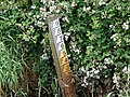 Drainage Channel Level Gauge - geograph.org.uk - 194705.jpg