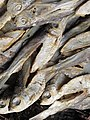 Dried fish in Chittagong 03.jpg