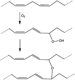260px-DryingOilDiene%27.png